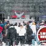 snowbreak2